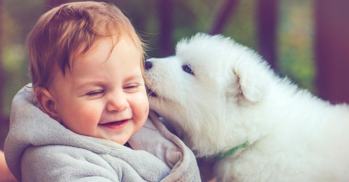Çocuklarınızı sevimli dostlara daha çok yaklaştırmak siz ebeveynlerin elinde