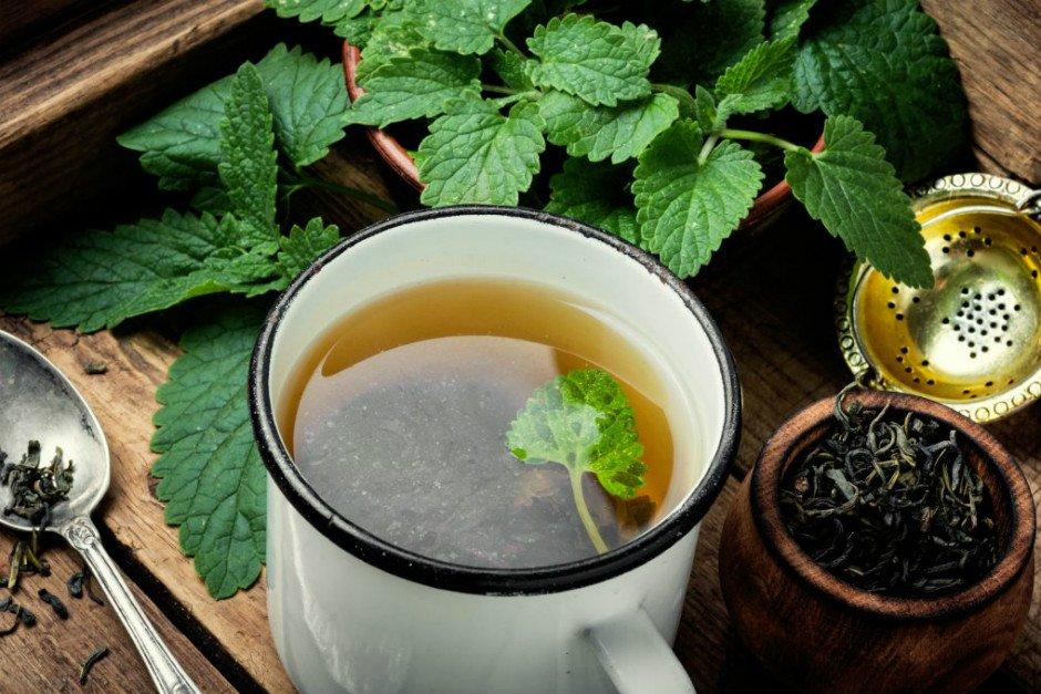 Sakinleştirici özelliği olan Melisa Çayı
