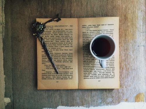 Felsefe meraklılarının mutlaka okuması gereken kitaplar