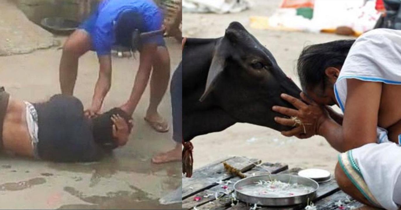 Hindistan'da bir genç inek eti taşıdığı şüphesiyle Hindular tarafından linç edildi