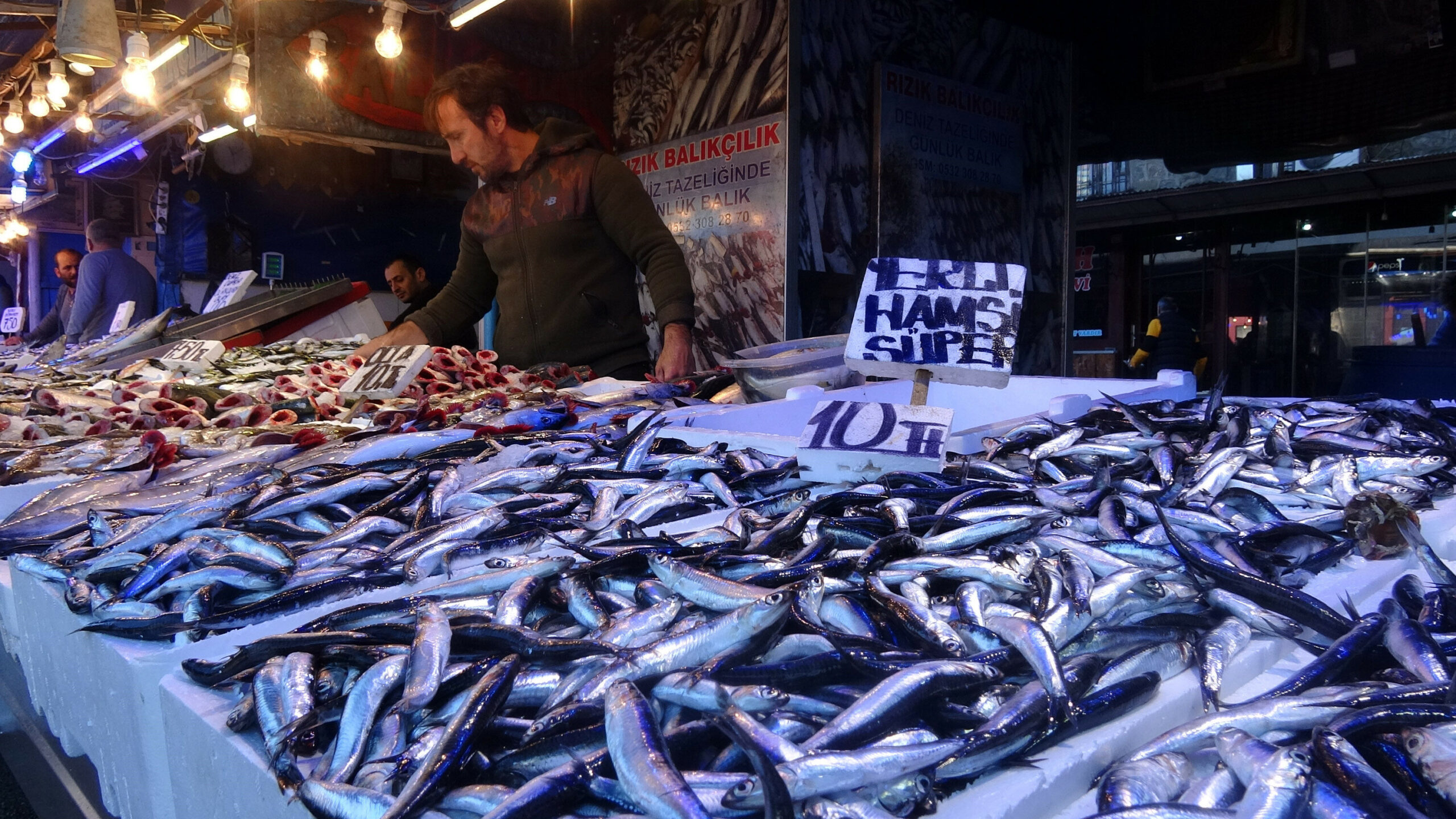 Mevsimi geliyor! Balık yiyecek miyiz?