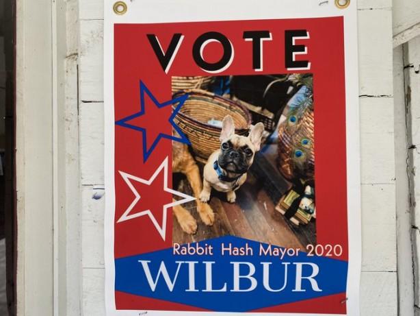 ABD'de bir köpek belediye başkanı seçildi.