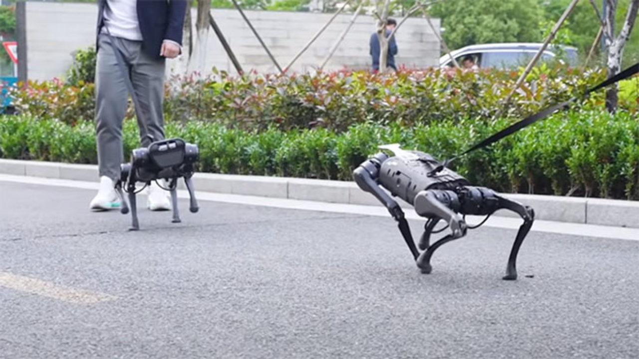 Çin'in savaş makinası robot köpekler!